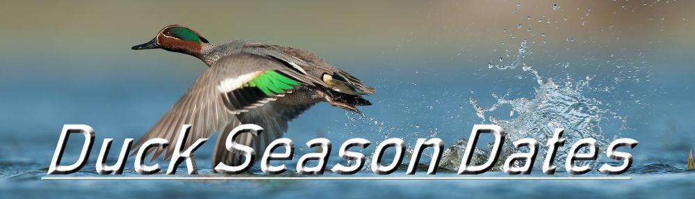 Tennessee Duck Season Dates | Mississippi Duck Season Dates | Oregon Duck Season Dates